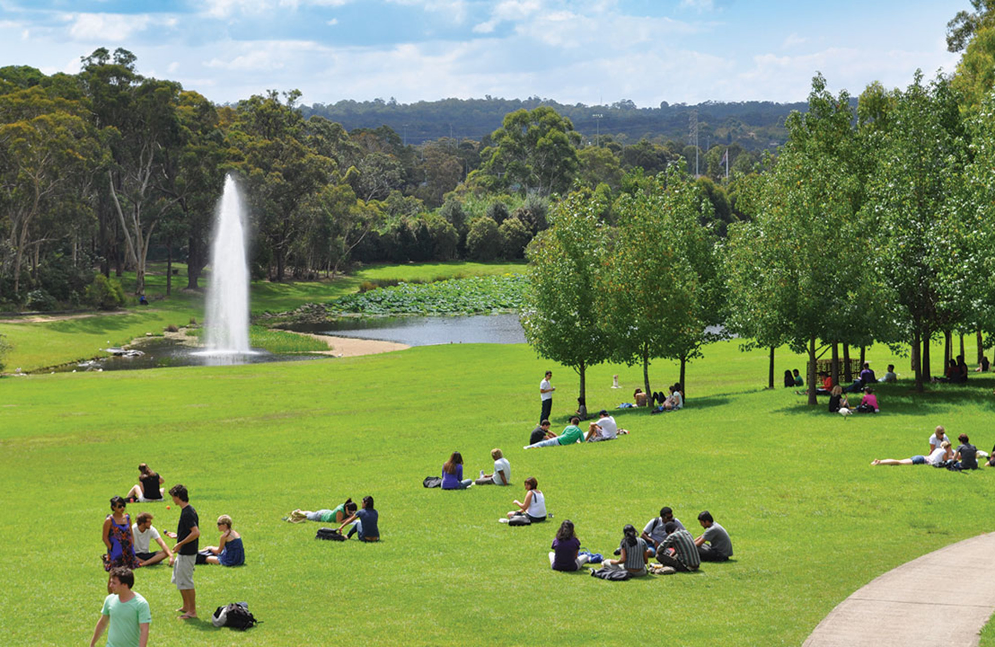 grönskande park vid macquarie university i sydney