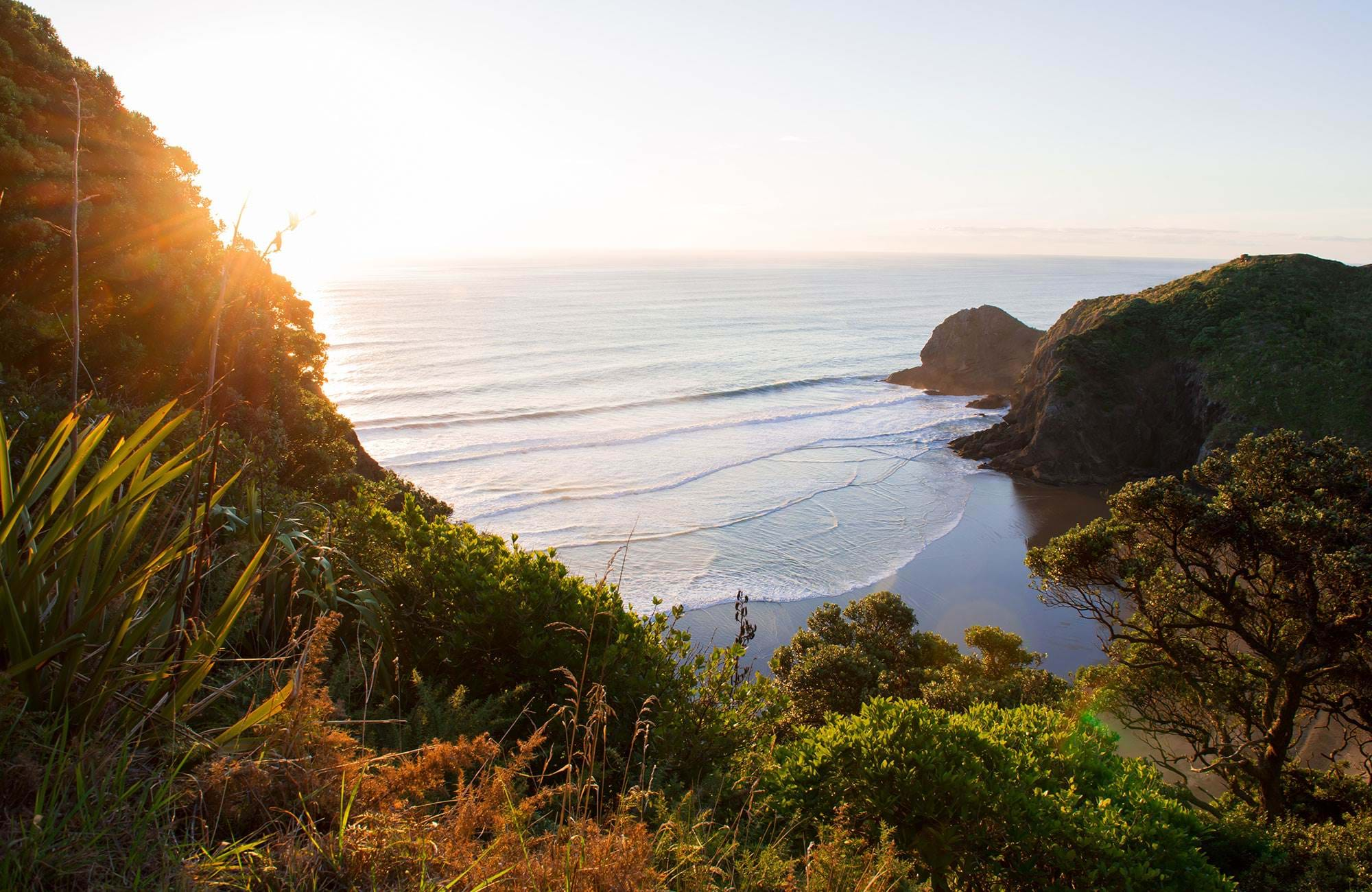 new-zealand-auckland-whites-beach
